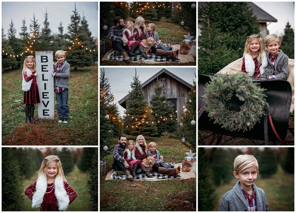 Book Christmas Session