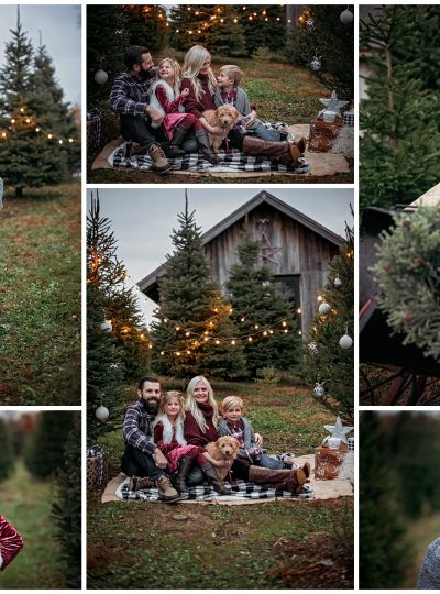 Christmas Tree Farm Sessions | Woodstock, Illinois